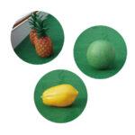 フルーツボウリング フルーツの模型